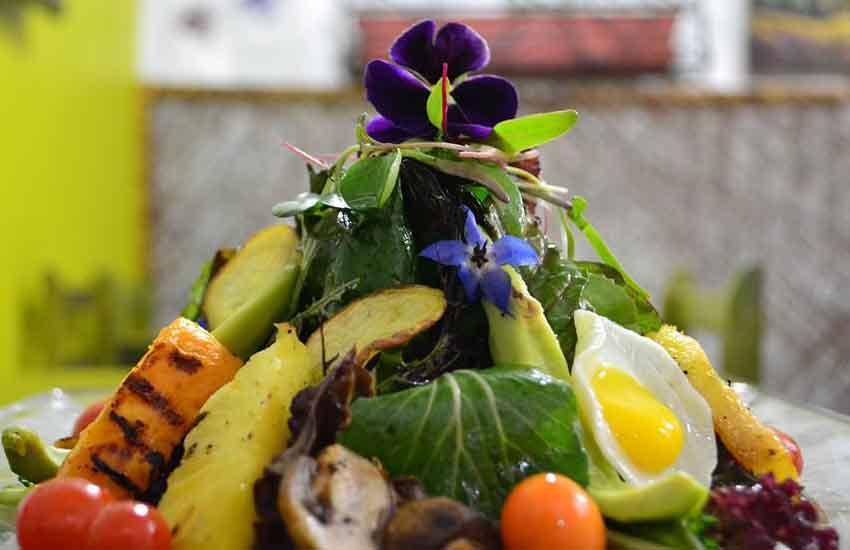 Best Vegetarian Restaurants in Cusco